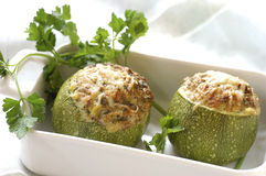 Stuffed round zucchinis Stock Photography