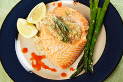 Stuffed salmon Stock Images