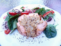 Stuffed salmon dinner. Dinner of salmon stuffed with crabmeat and salad on the side royalty free stock photography
