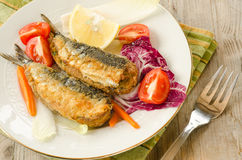 Stuffed Sardines Stock Photography