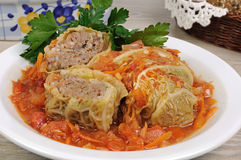 Stuffed savoy cabbage on a plate. Stuffed savoy cabbage under onion-carrot gravy Stock Image