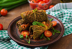 Stuffed savoy cabbage rolls Stock Images