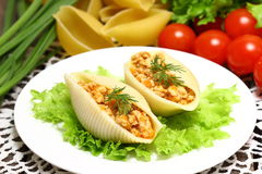 Stuffed Shell Pasta with Tomato Sauce and Cheese Baked with Ingredients Royalty Free Stock Photo