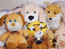 Stuffed soft animal toys waiting for a child to play Royalty Free Stock Photos
