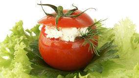 Stuffed tomato Stock Images