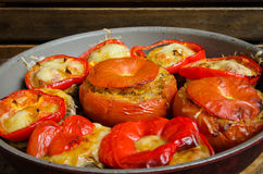 Stuffed tomatoes and mushrooms Royalty Free Stock Image