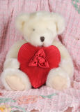 Stuffed Toy Animal Holding a Heart Shaped Box Royalty Free Stock Photography