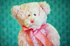 Stuffed toy bear Royalty Free Stock Image