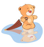 A stuffed toy bear cub and an umbrella cartoon. The small bear with an umbrella costs in a pool Royalty Free Stock Photography