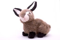 Stuffed toy rabbit. Isolated on a white background Royalty Free Stock Images