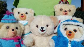 Stuffed Toy, Teddy Bear, Toy, Plush Royalty Free Stock Photo