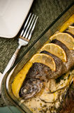Stuffed trout with lemon dish Stock Image