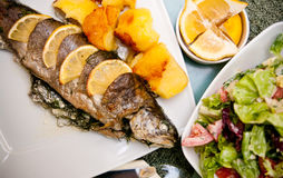 Stuffed trout with lemon dish. Delicious dish of trout fish stuffed with onion, basil and herbs, decorated with lemon Royalty Free Stock Image