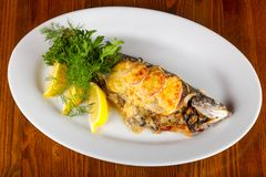 Stuffed trout. With mushrooms and sauce stock images