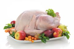 Free Stuffed Turkey Stock Images - 11194164
