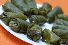 Stuffed vine leaves. Appetizer on a white plate with orange background, dynamic crop, shallow depth of field Stock Image