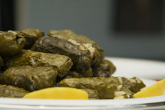 Stuffed vine leaves Royalty Free Stock Photos