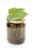Stuffed vine leaves Stock Photography