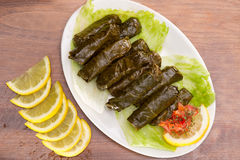 Stuffed vine leaves , Lebanese Cuisine Stock Image
