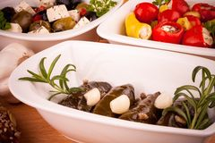 Stuffed vine leaves and Mediterranean antipasti closeup Royalty Free Stock Images