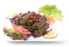 Stuffed vine leaves plate - lebanese cuisine Stock Images