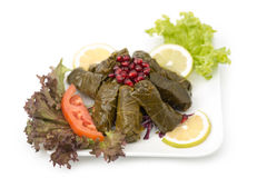 Stuffed vine leaves plate lebanese cuisine. Stock Image