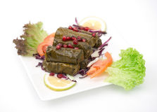Stuffed vine leaves plate lebanese cuisine . Royalty Free Stock Images