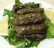 Stuffed Vine Leaves Platter Stock Photos