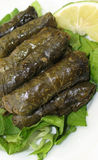 Stuffed Vine Leaves Platter on White Stock Photography