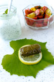 Stuffed vine leaves Royalty Free Stock Photography