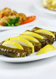 Stuffed vine leaves on a white plate Stock Image