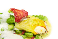 Stuffed zucchini flowers on white Royalty Free Stock Images