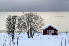 Stuga och träd som täckas med snö royaltyfri fotografi