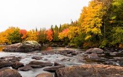 Stugaland Quebec Kanada Royaltyfria Foton