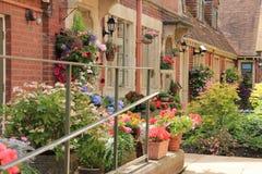 Stugaträdgård i byn Salisbury i England i sommaren royaltyfri foto