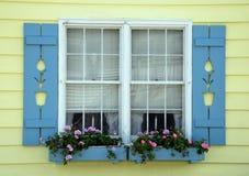 stugatulpanfönster Royaltyfri Foto