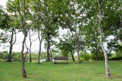 Stuhl im Garten Lizenzfreie Stockfotografie
