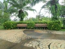 Stuhl im Park stockbilder