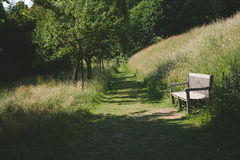 Stuhl im Park Stockfotografie