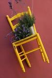 Stuhl und Blume Lizenzfreie Stockfotos