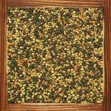 Stuifmeel Royalty-vrije Stock Afbeelding