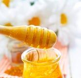 Stuifmeel en honing Royalty-vrije Stock Afbeelding
