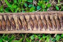 Stuk die van droog hout op gras in het hout liggen Stock Foto's