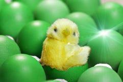 Stuk speelgoed de kip zit in shell van ei tussen groene eieren als symbool van 2017 volgens de kalender van het oosten Stock Foto