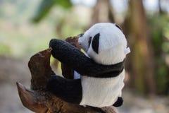 Stuk speelgoed de panda draagt Royalty-vrije Stock Afbeeldingen