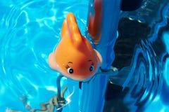 Stuk speelgoed in de pool Royalty-vrije Stock Afbeeldingen