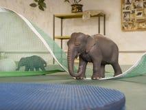 Stuk speelgoed dierlijke olifanten stock fotografie
