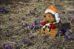 Stuk speelgoed egel op bloemengebied enkel Geregend Royalty-vrije Stock Foto