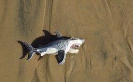 Stuk speelgoed haai op strandzand in Crystal Cove State Park, in Zuidelijk Californië stock foto