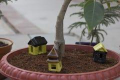 Stuk speelgoed huis op een boompot Stock Foto